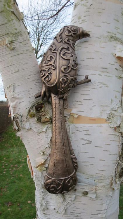 Racket Tailed Treepie - Image 0