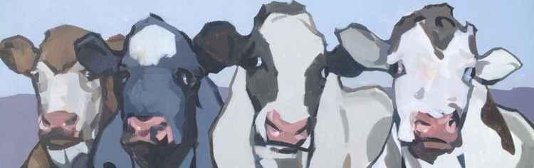 4 Cows  -
