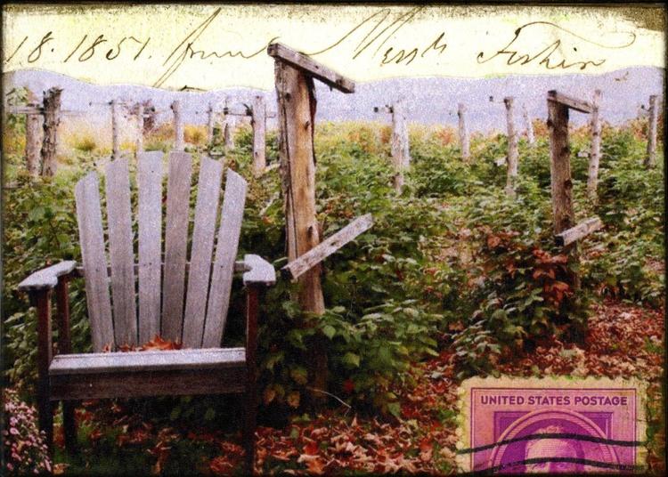 Garden, Mixed Media Miniature Art - Image 0