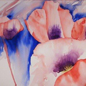 Dusk Poppies by Vandy Massey