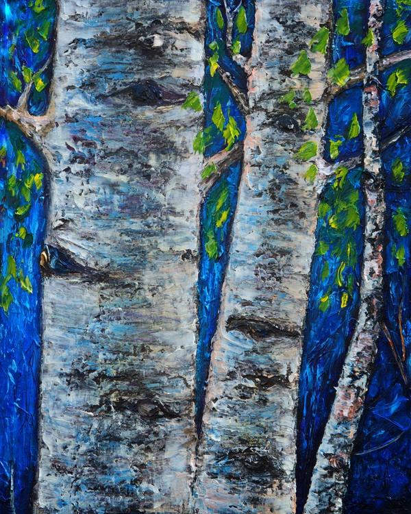 Birch Trees - Image 0