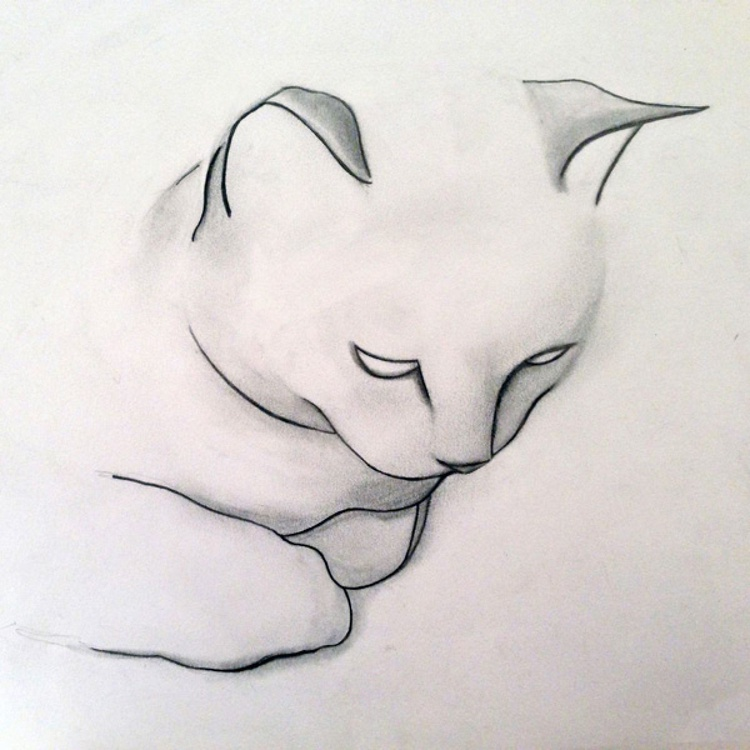 Modern Cat - Image 0