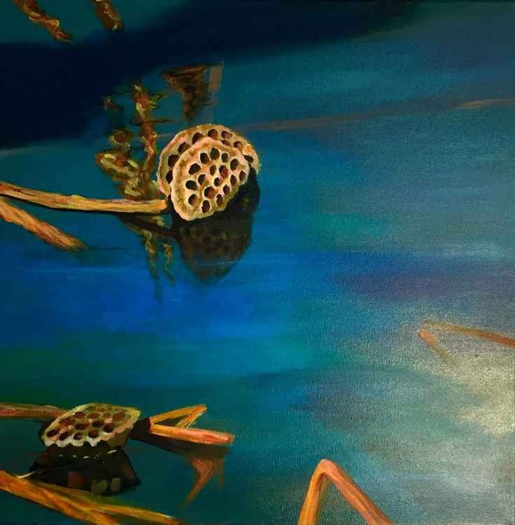 The Pond 2 -