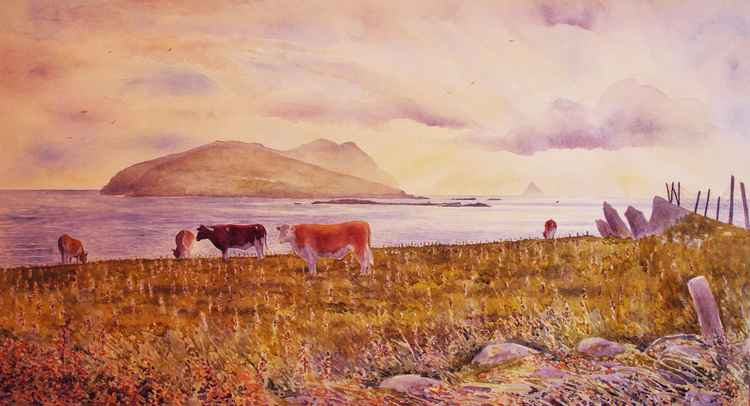 Evening, Dingle peninsula, County Kerry -
