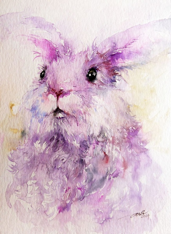 Angie the Angora Rabbit - Image 0