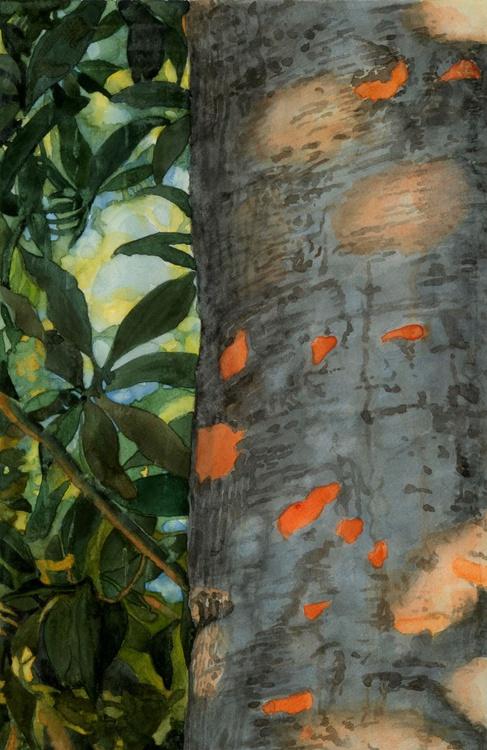 MAGIC SUMMER LIGHT ( medlar trunk) - Image 0