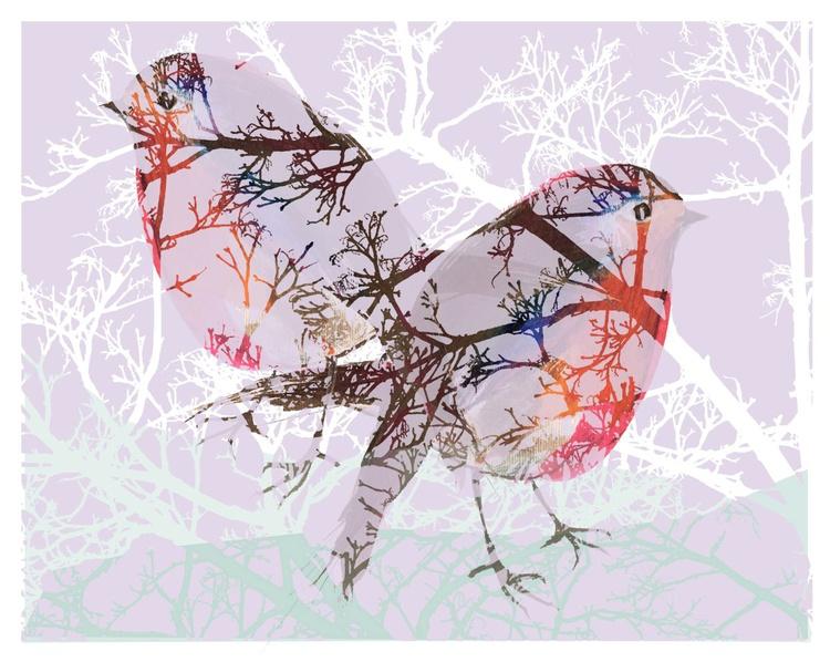 Pink Sky Robins - Image 0