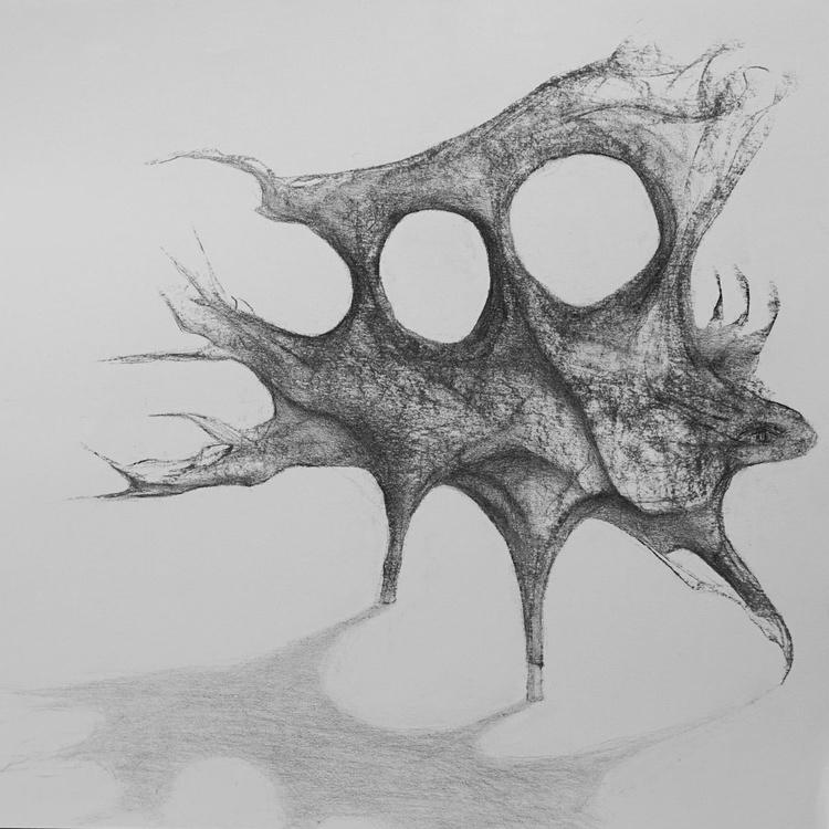 Iguana - a multidimensional study - Image 0
