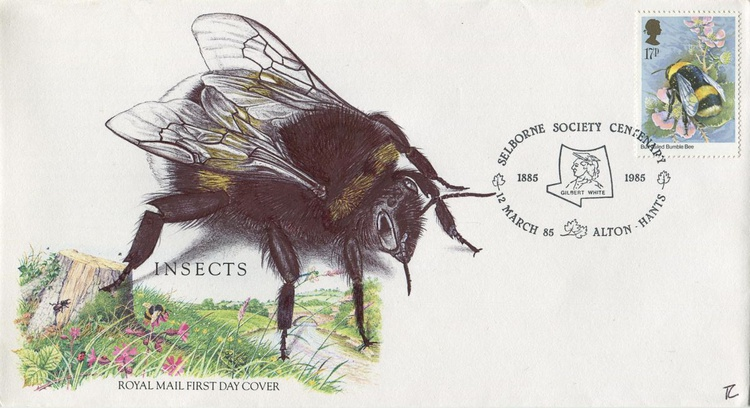 The Plight of the Bumble Bee - Image 0