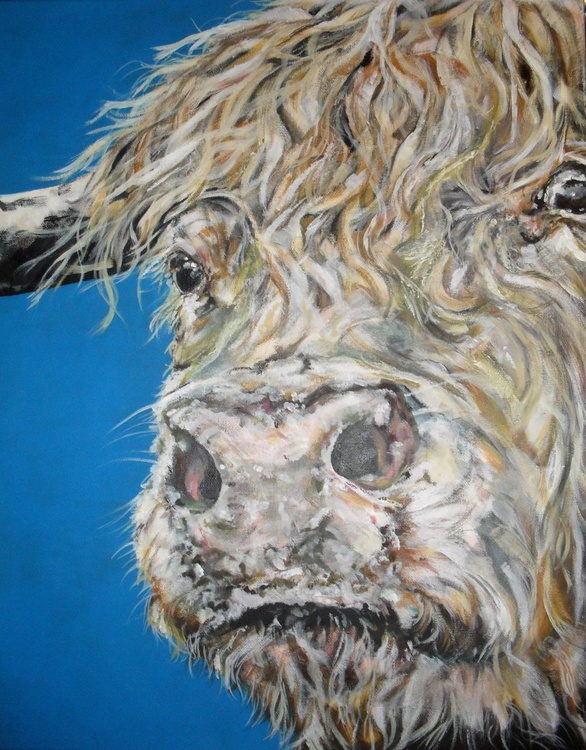 Woolly Bully - Image 0