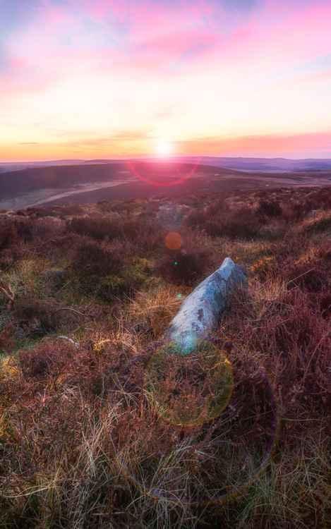 Hookney Tor Dartmoor Devon England UK