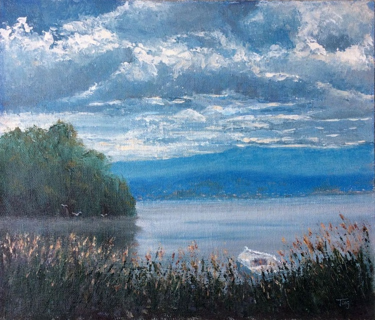 Lake illawarra overcast - Image 0
