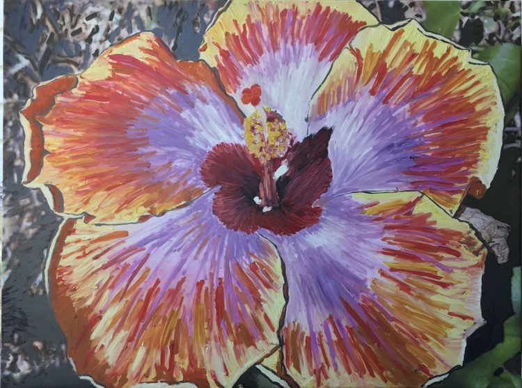 Hibiscus Heaven - Image 0