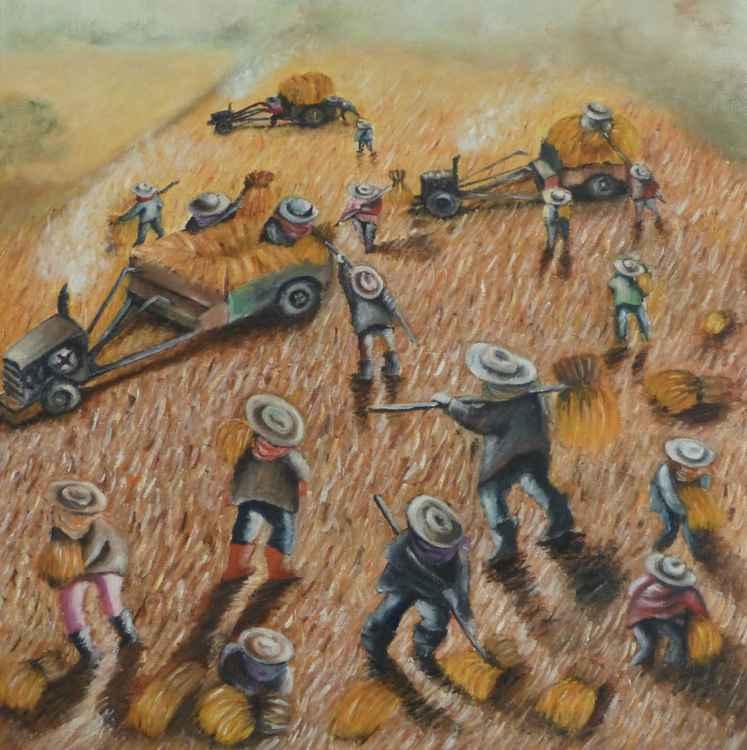 Rice farmers -