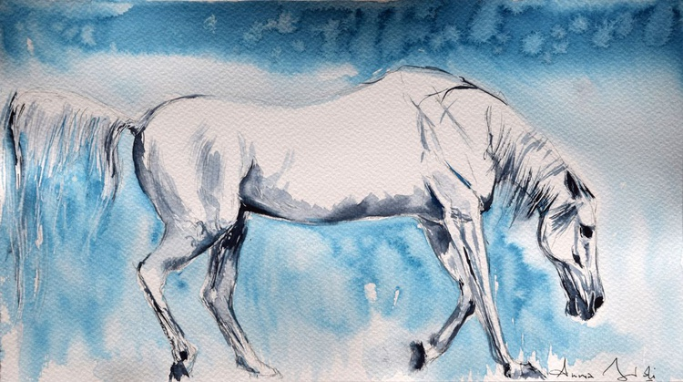 White on blue / Equine Horse  Art  Modern Contemporary Wall Art Home Decor  by Anna Sidi - Image 0