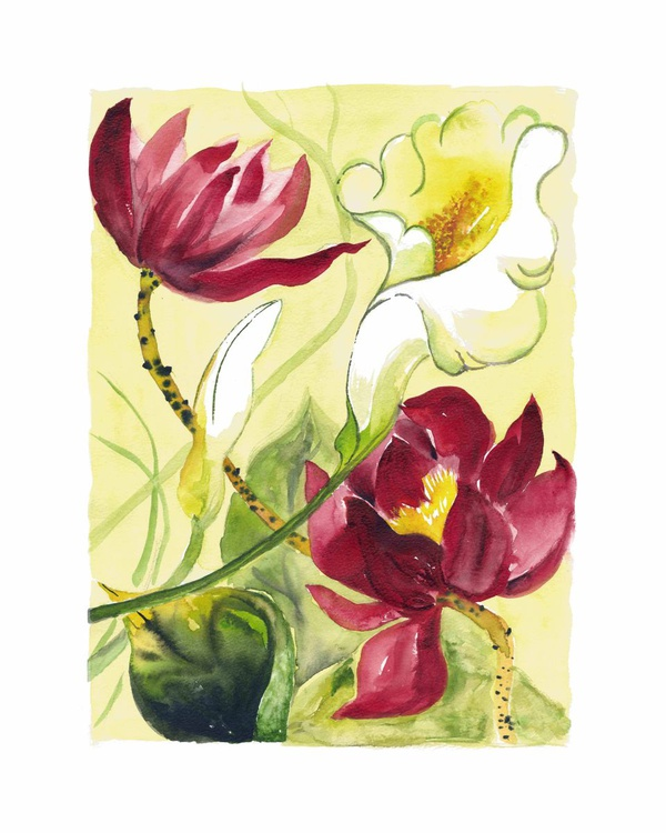 Red Lotus II - Image 0