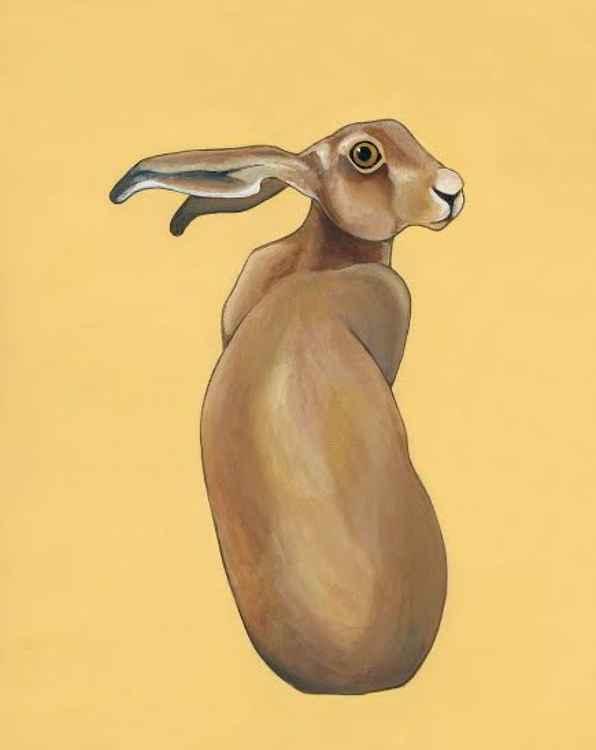 'Hare' original -
