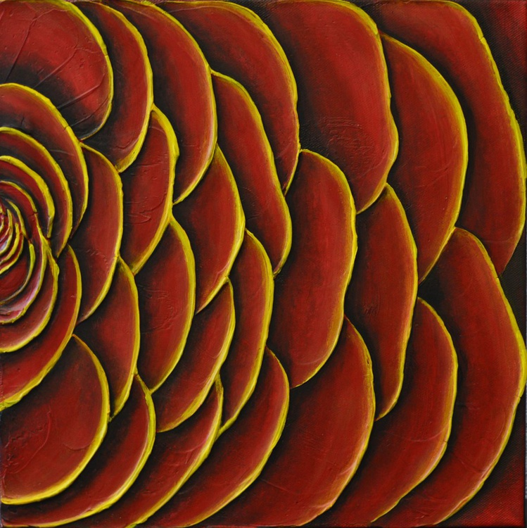 Red Ranunculas - Image 0