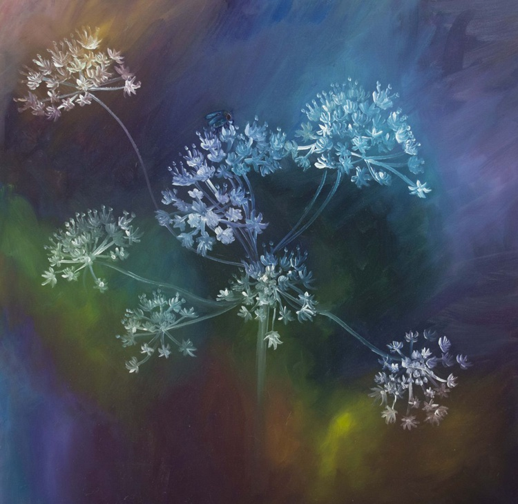 Visiting the Cow Parsley - Image 0