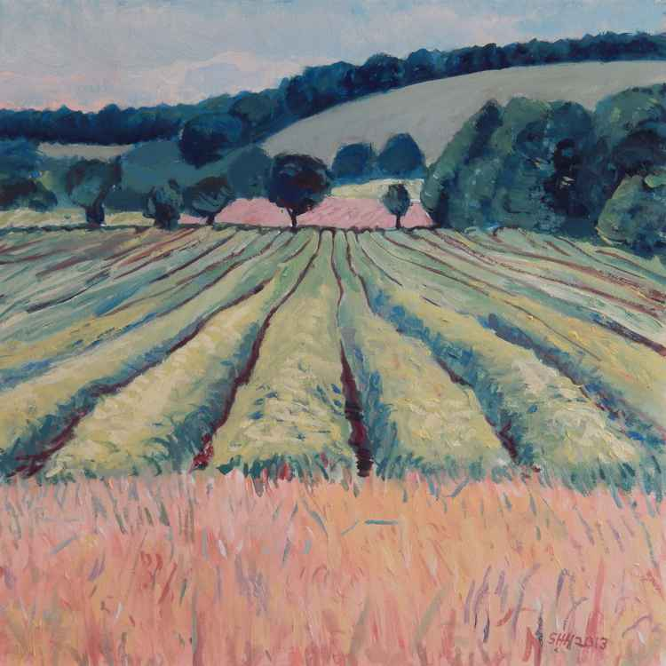 Fields near Cupar, Fife, 2013 -