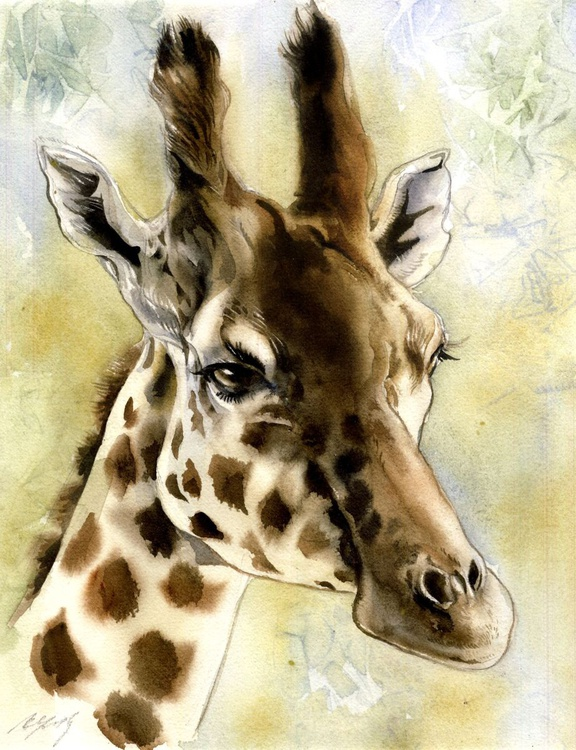 portait of a giraffe - Image 0