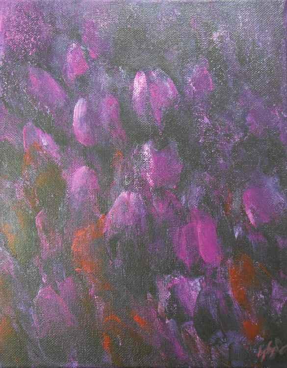 Magenta Tulips -