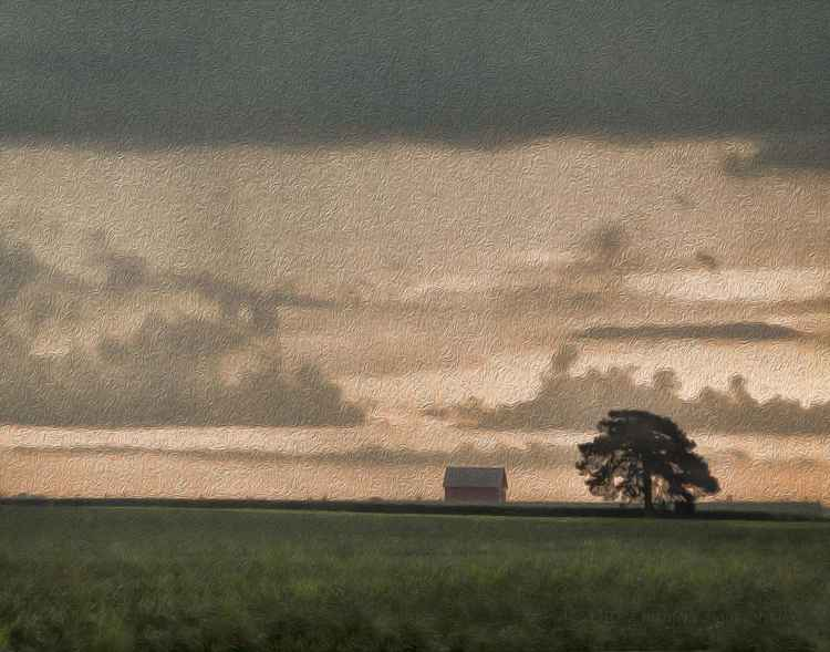 Farmland under a Darkening Sky -