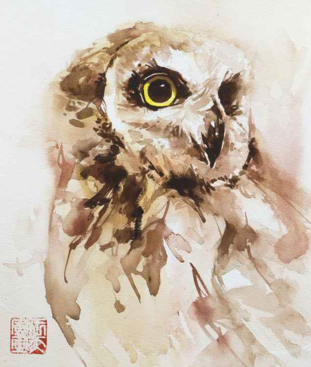 owl 011