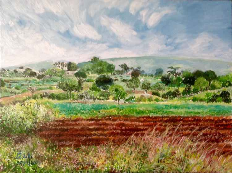 The ploughed field -