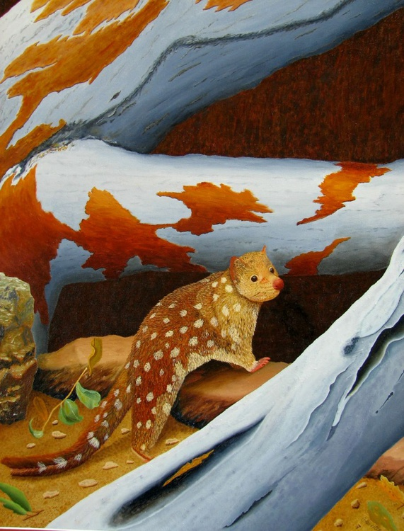 Acrylic painting of Magnificent Quoll - Image 0