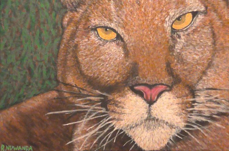 Florida Panther - Image 0