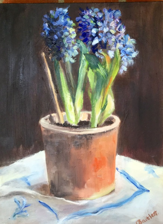 Hyacinths in an old Teracotta Pot - Image 0