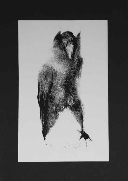 Raven -