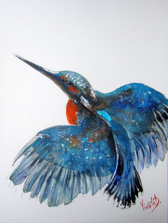 The Kingfisher 1 - Image 0
