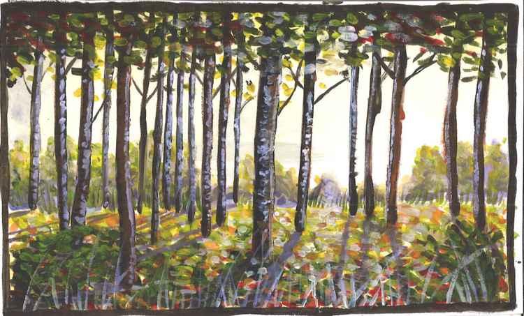Birch Trees at Dawn -