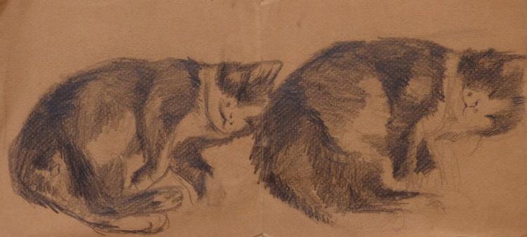 Double Sleepy Cat, life drawing 33x15 cm - Image 0