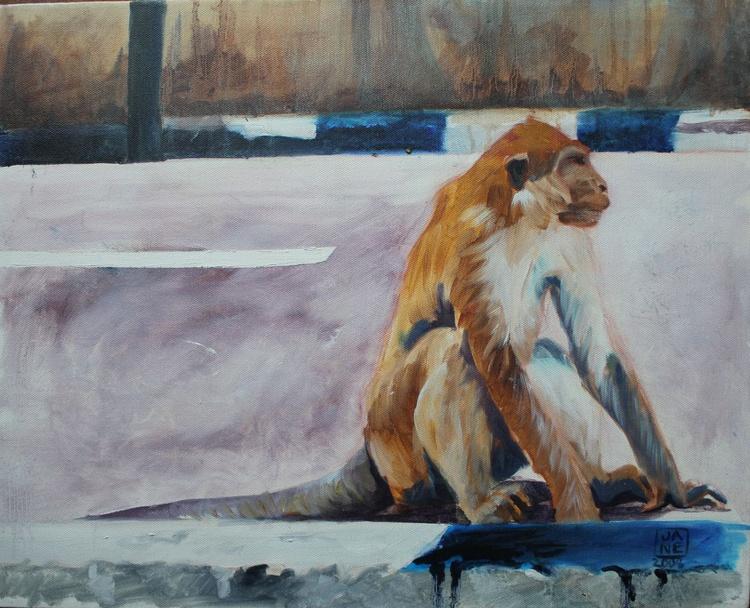 Supasave Monkey, Carpark II,  Brunei - Image 0