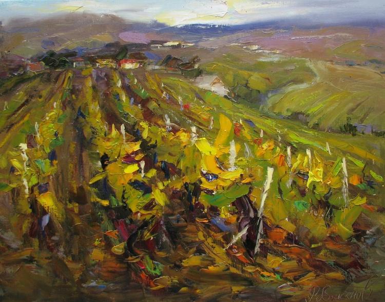 Vineyaards - Image 0