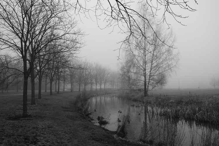 Misty Helsinki Morning -