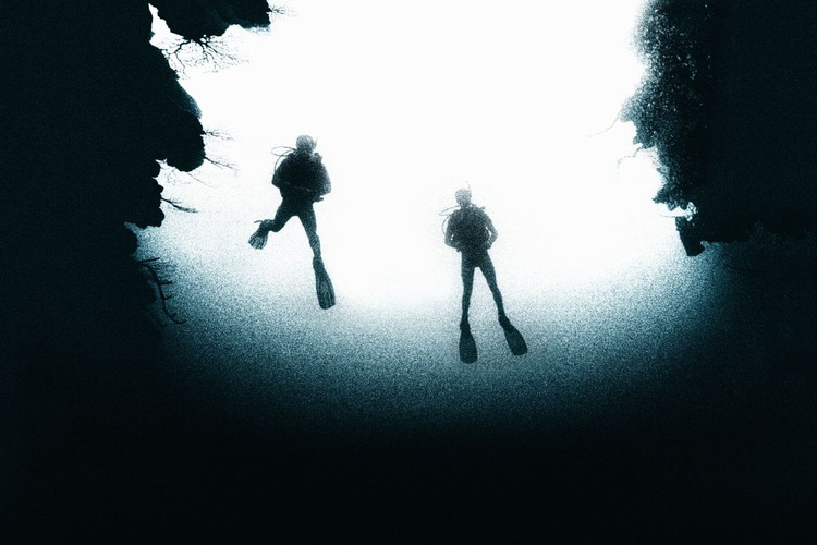 Deep Dive (Ltd Edition of only 50 Fine Art Giclee Prints from an original photograph) - Image 0