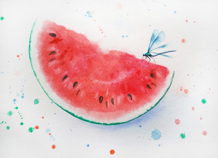 Dragonfly On Slice Of Watermelon - Image 0