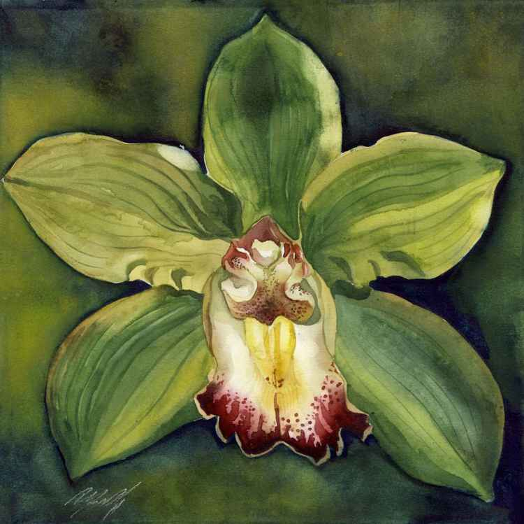 orchid in green -
