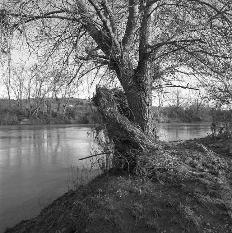 Tevere river -
