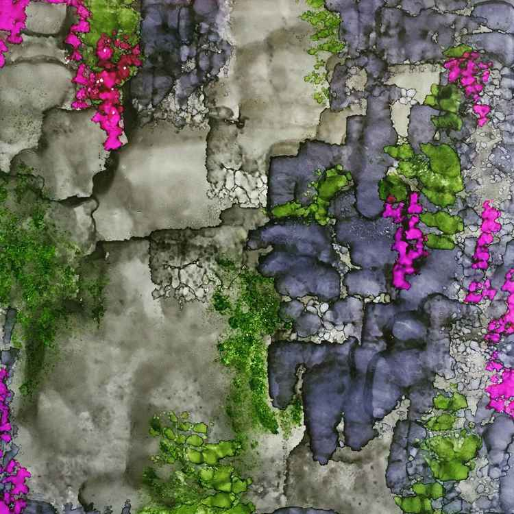 Vines on a Stone Wall -