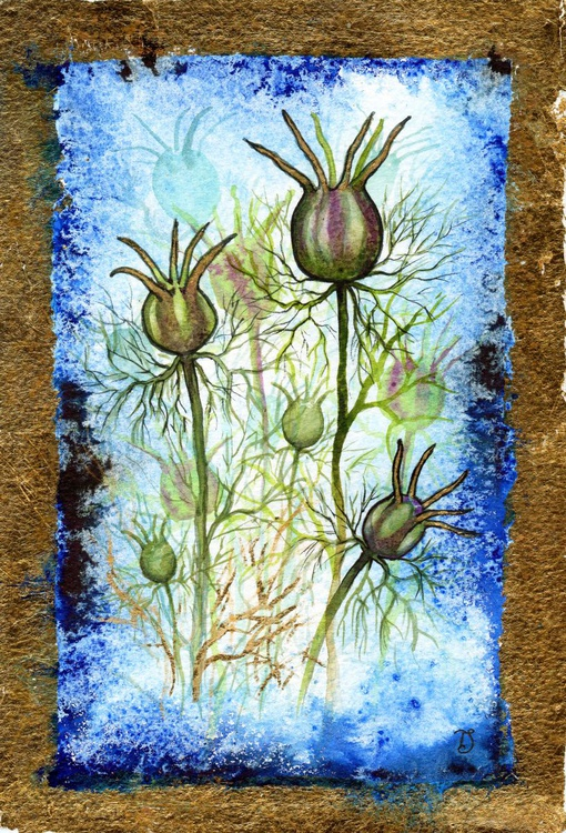 Love-In-A-Mist - Image 0