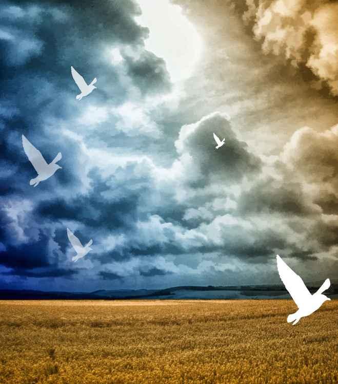 Storm over Corn