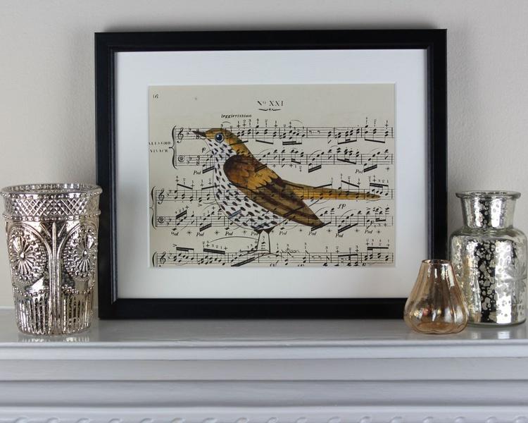 Songbird No 21 - framed - Image 0