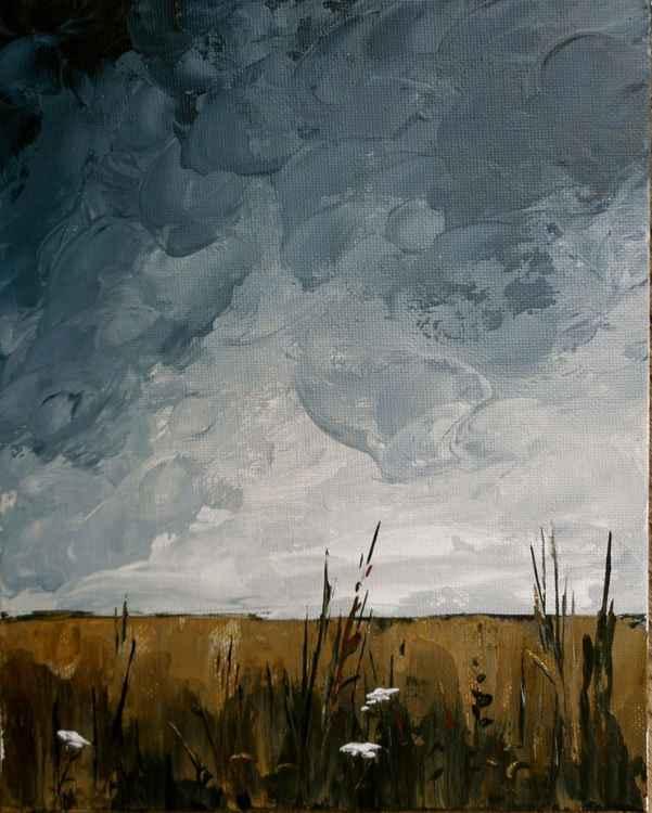 Overcast Skies -