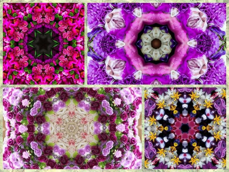 Mandala collage x4 2 - Image 0