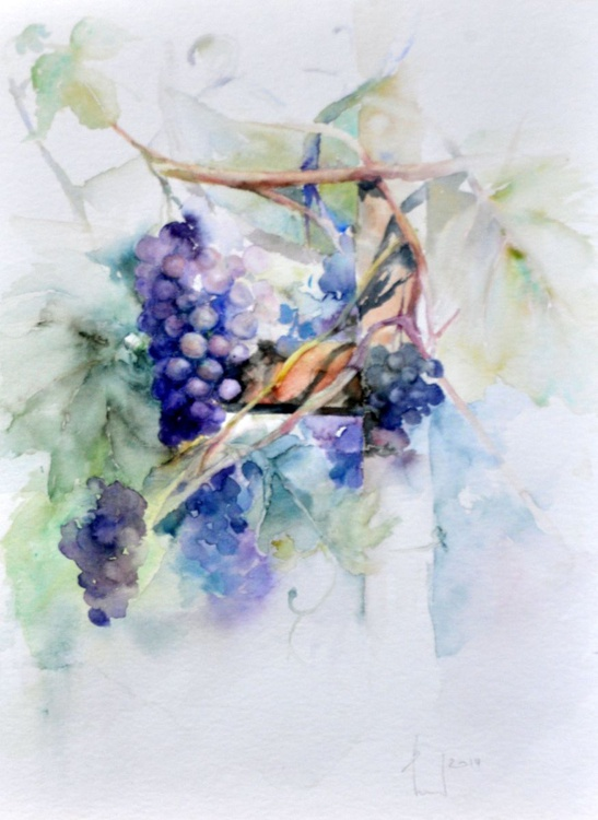 I EAT THE SWEET GRAPES original watercolor - Image 0